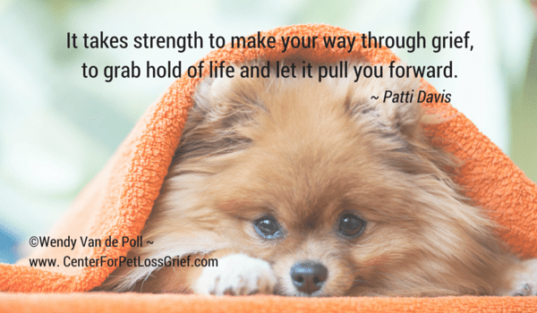 Loss Of A Pet Quote Interesting Pet Loss Quotes  Center For Pet Loss Grief