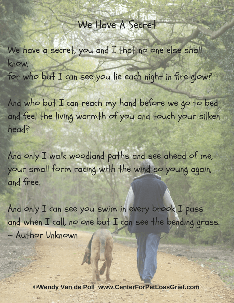 pet loss poem we have a secret