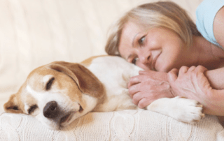 Pet Loss Grief Over Sixty! How do you Recover