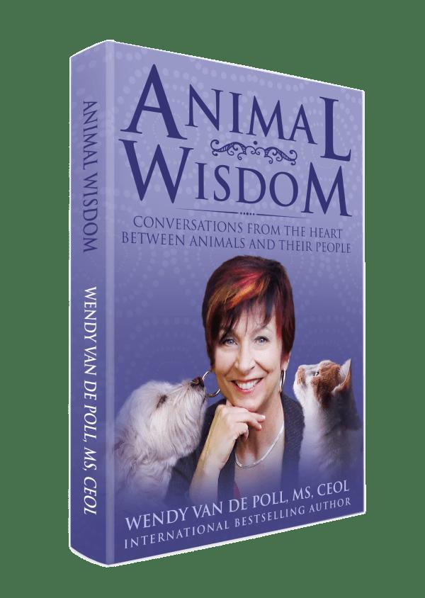 Animal Wisdom Book