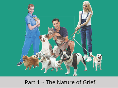 Pet Professional Pet Loss Online Course