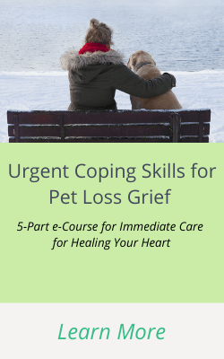 coping skills for pet loss A 5-Part e-Course for Immediate Care for Healing Your Heart