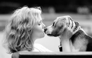 Listen to your intuition during pet hospice