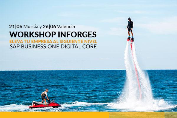 workshop sap inforges