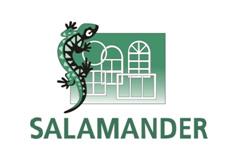 Fenêtre PVC Salamander