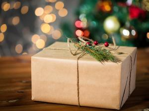Holiday Gift Delivery Box