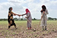 AgriLinks: Cultivating the habits of efficient water management in Central Asia