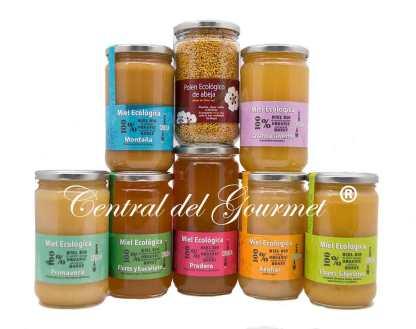 Miel Ecológica Cruda Gourmet Verdemiel Pack Degustacion 1