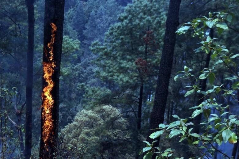 Incendio forestal en Huitzilac