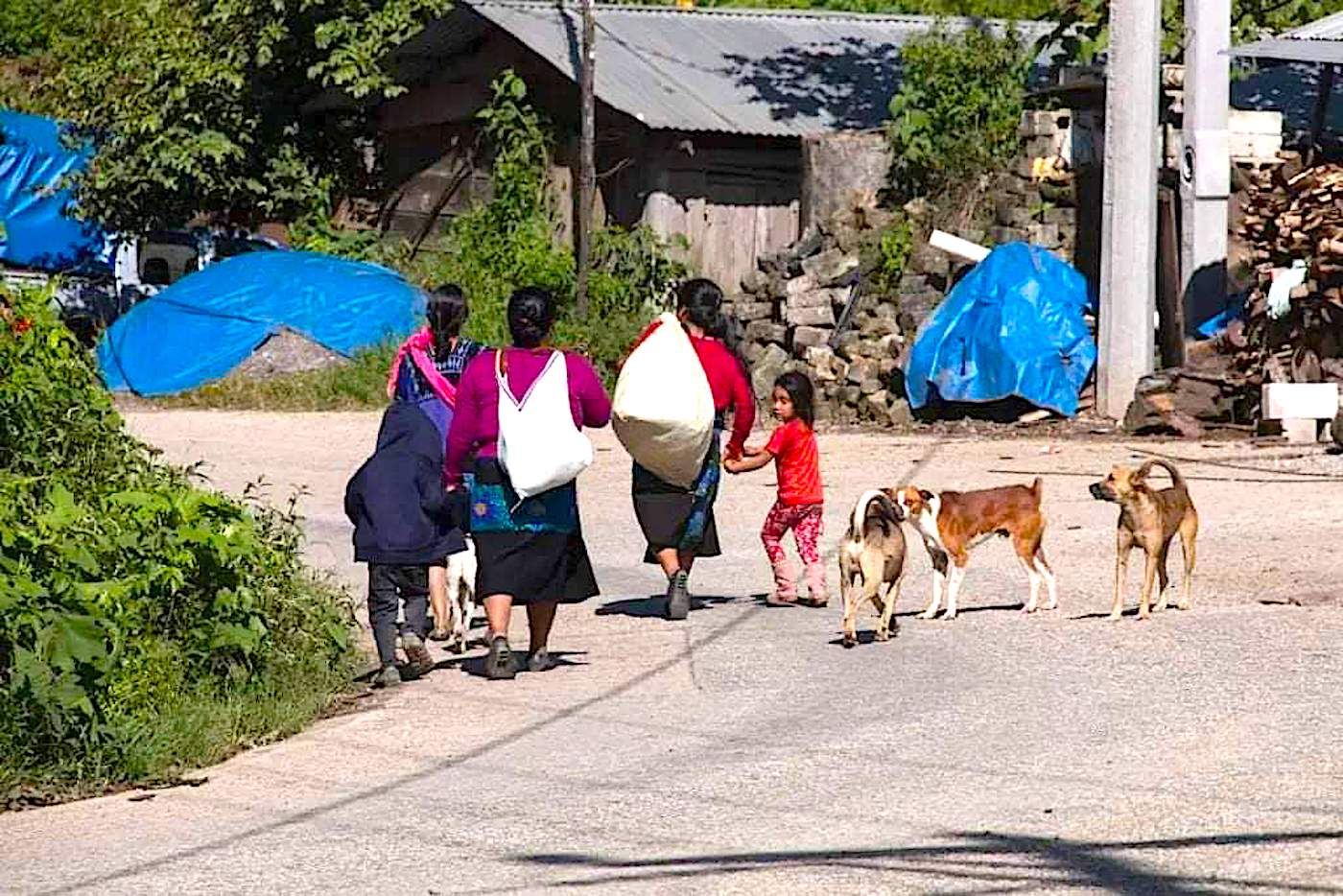 Reportan 2 mil desplazados por conflictos en Pantelhó y Chenalhó