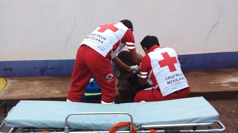 Un cocodrilo atacó a un indigente en Tabasco y le arrancó el brazo