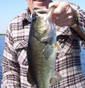 Bass fishing in Florida and Orlando Bass Fishing Guides