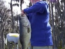 February Bass Fishing Forecast