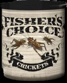 Fisher's Choice Crickets for catching Crappie