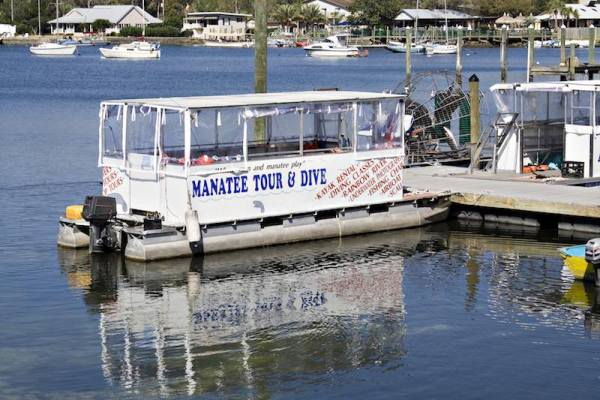 Manatee tour pontoon boat in Central Florida
