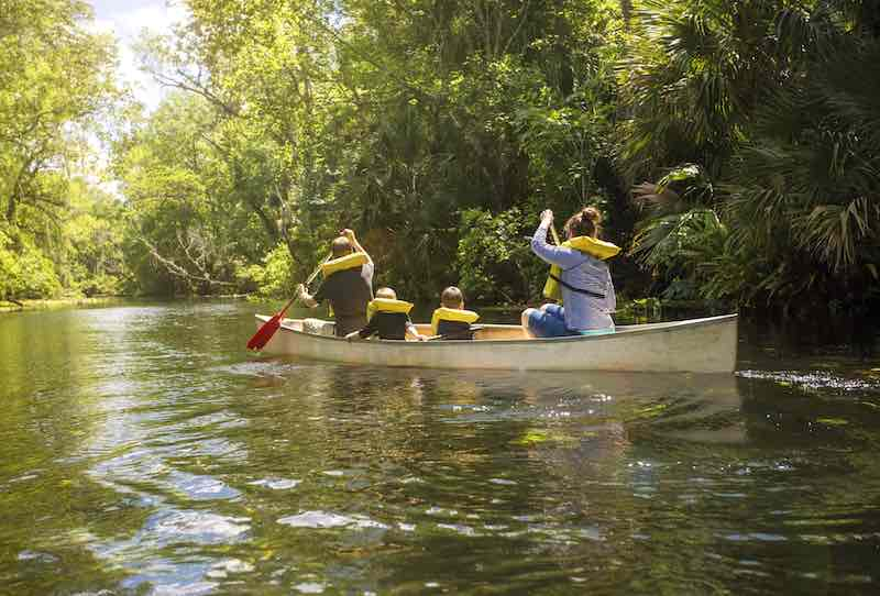 Family Of Four Canoing On A River in Central Florida