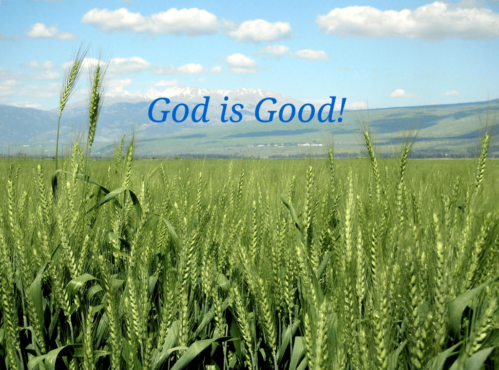 God is good superimposed over a picture of prairie grass with mountains in background