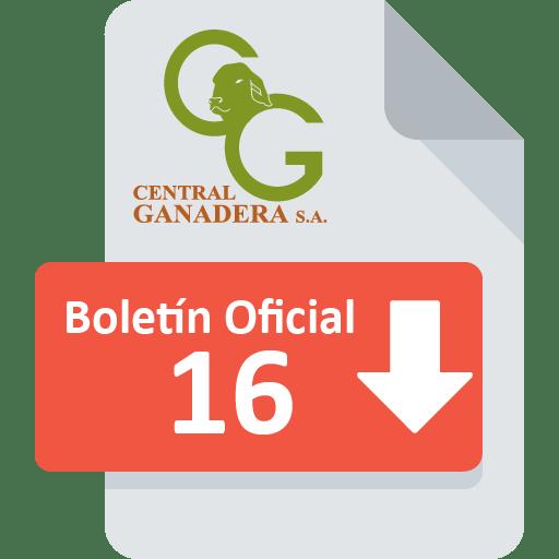 Boletín Oficial 16