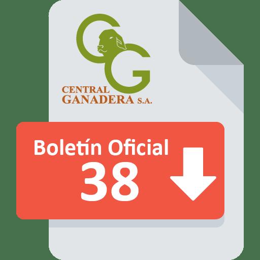 Boletín Oficial 38