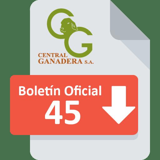 Boletín Oficial 45