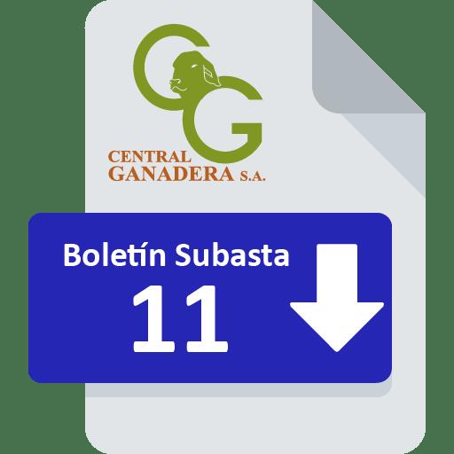 Resultados Subasta 11