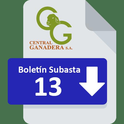 Resultados Subasta 13