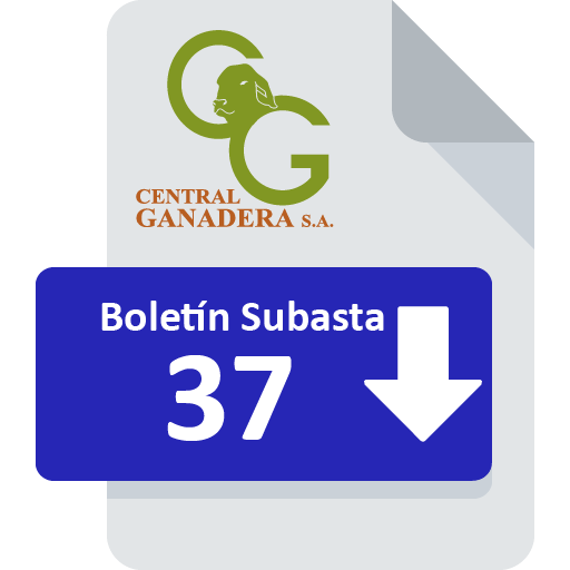 Resultados Subasta 37