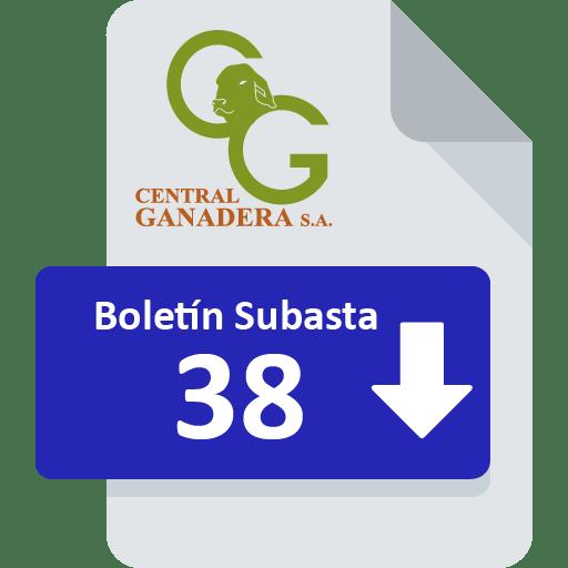 Resultados Subasta 38