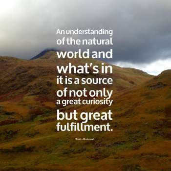 An understanding of the natural world and what's in it is a source of not only a great curiosity but great fulfillment.