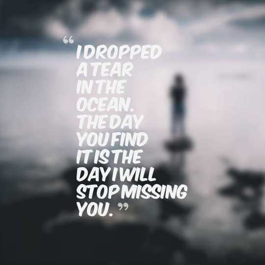 I dropped a tear in the ocean. The day you find it is the day I will stop missing you.