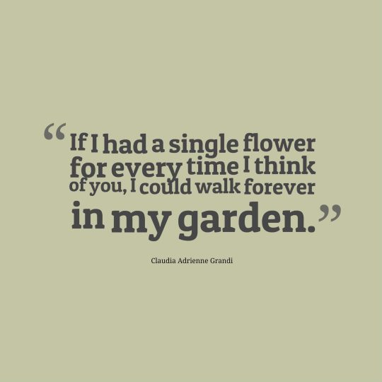 If I had a single flower for every time I think of you, I could walk forever in my garden.
