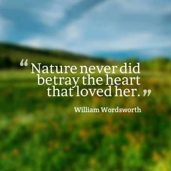 Nature never did betray the heart that loved her.