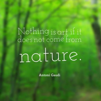 Nothing is art if it does not come from nature.