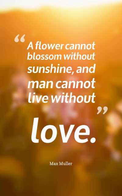 A flower cannot blossom without sunshine, and man cannot live without love.