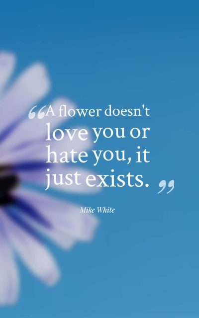 A flower doesn't love you or hate you, it just exists.