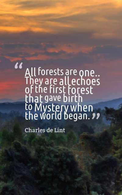 All forests are one... They are all echoes of the first forest that gave birth to Mystery when the world began.