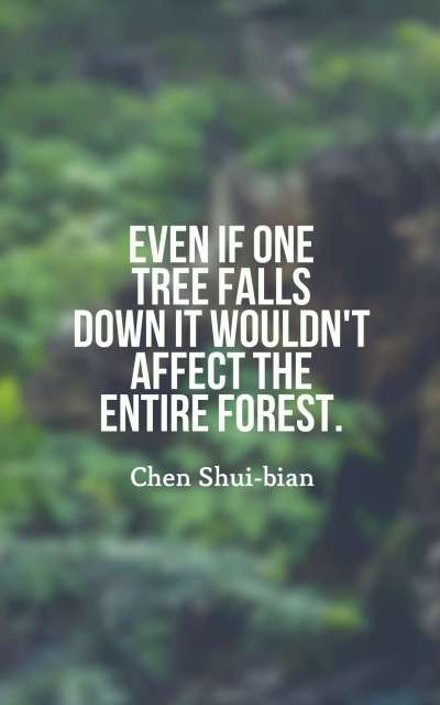 Even if one tree falls down it wouldn't affect the entire forest.