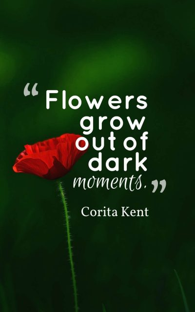 Flowers grow out of dark moments.