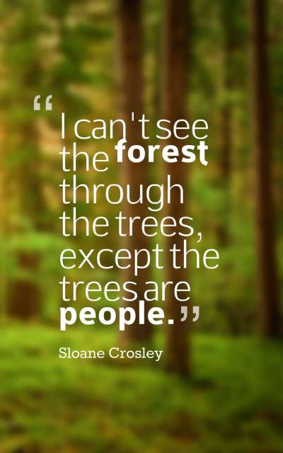 I can't see the forest through the trees, except the trees are people.