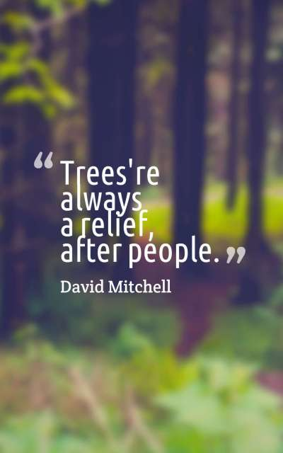 Trees're always a relief, after people.