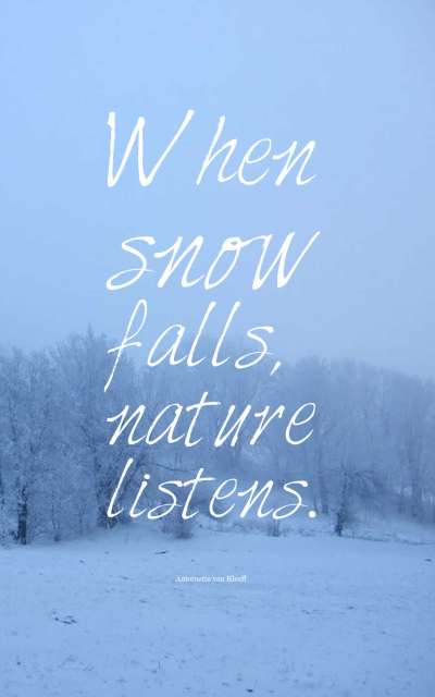 Snow Winter Quotes