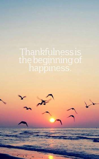Thankfulness is the beginning of happiness.
