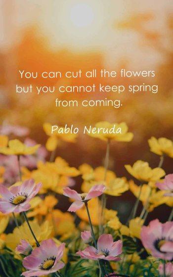 You can cut all the flowers but you cannot keep spring from coming.
