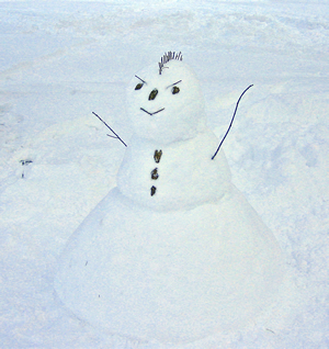 Snow Punk