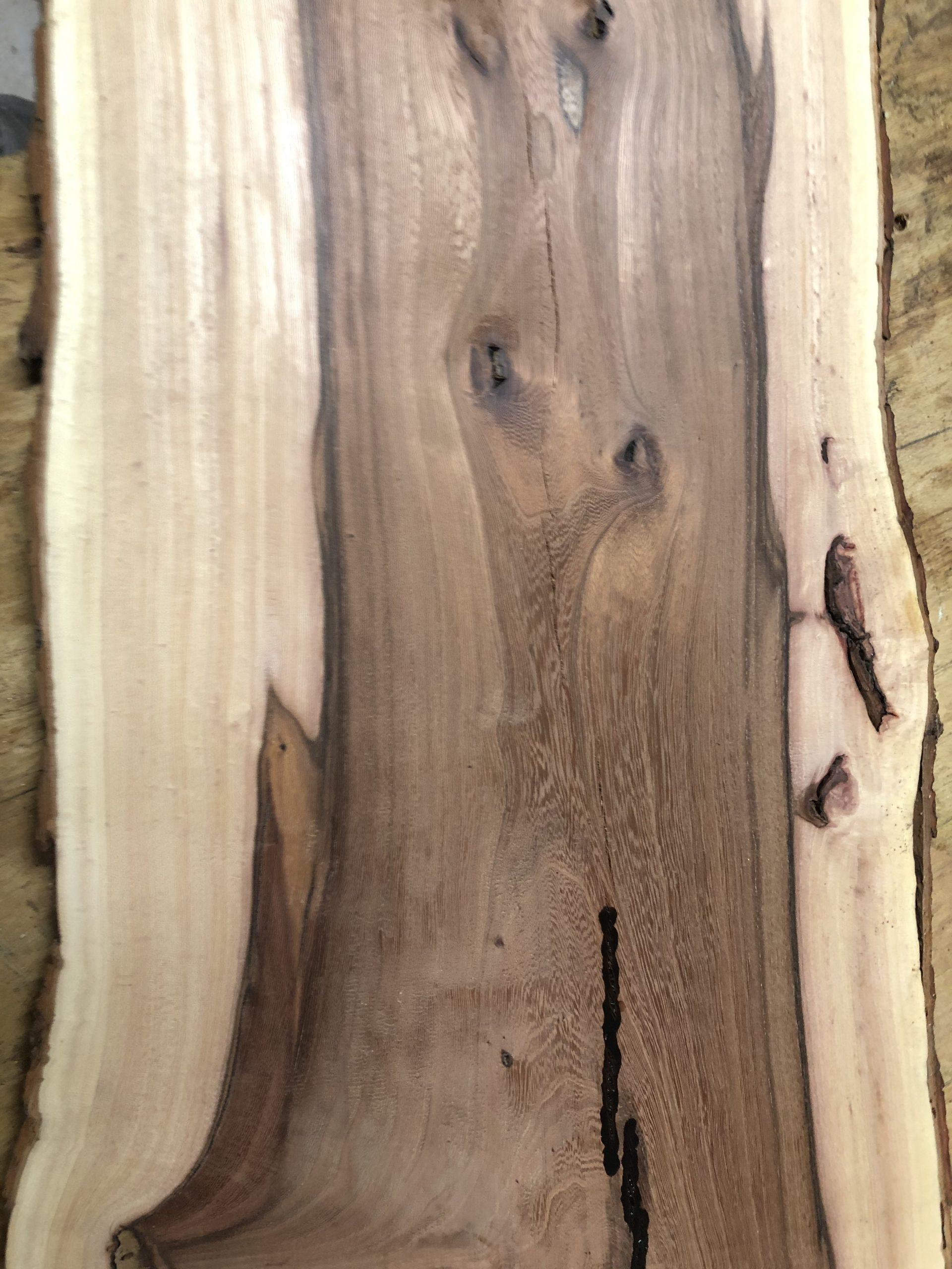 cedar elm board
