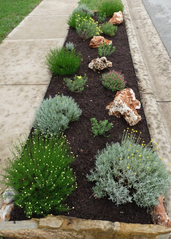 >curbside landscaping central