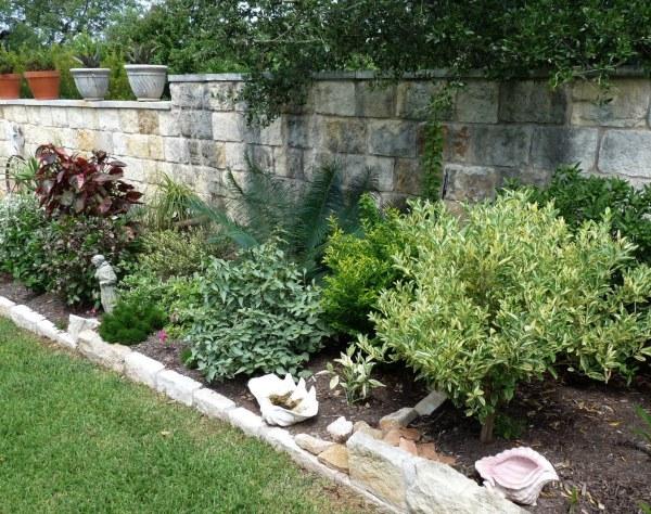 august 2010 central texas gardening