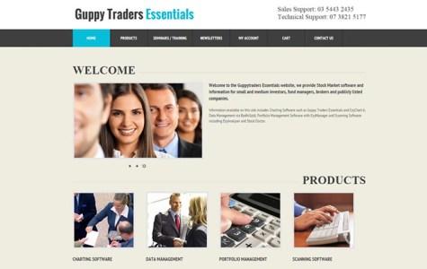 webdesign-portfolio-guppy