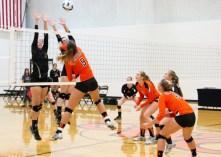 volleyball_0537