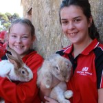 Rabbit Farm Visit